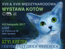 Międzynarodowa Wystawa Kotów 2017 4-5.11.2017
